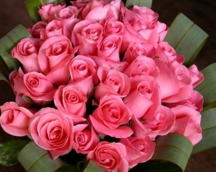 A Dozen Pink Roses    Download More Free Wallpaper Visit Freedesktopwallpaperz.net: Pink Bouquets, Pink Things, Flowers Girls, Wedding Flowers, Wedding Plans Timeline, Beautiful Pink, Pink Rose, Flore Mai, Little Flowers