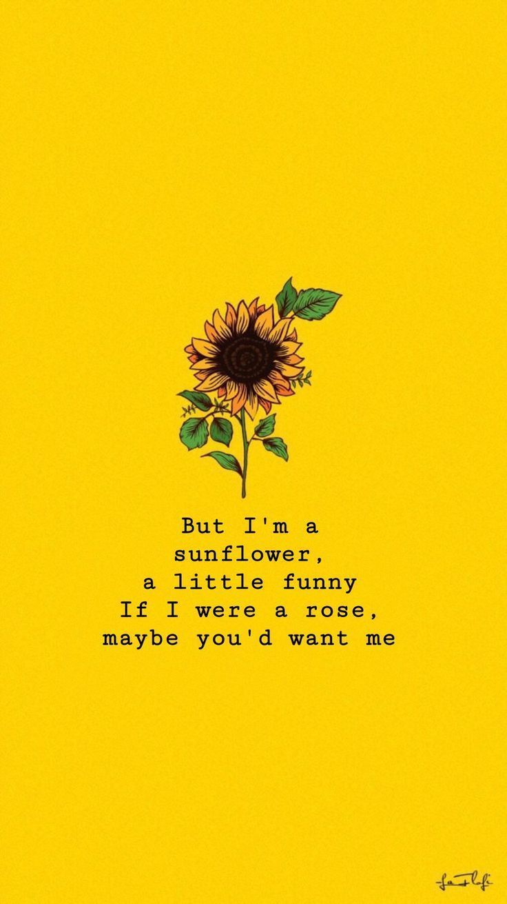 Sunflowers Sierraburgessisaloser Wallpaper Sie Gelb Sie Sierraburgessisaloser Sunflowers Wa Sunflower Quotes Wallpaper Quotes Sunflower Wallpaper