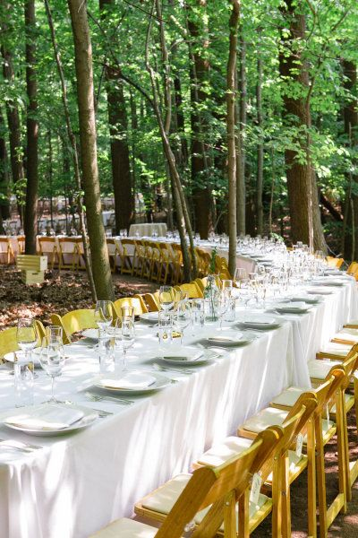 a long tablescape winding through the woods