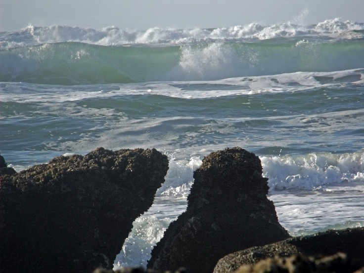 wind and oregon coast Synopsis: high pressure will remain over the ne pacific through most of this weekmeanwhile, thermal low pressure will hug the south oregon coast this will maintain gusty northerly winds through midweek winds gradually diminish late in the week.