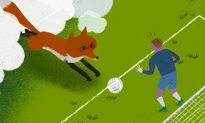 Who can outfox the Foxes