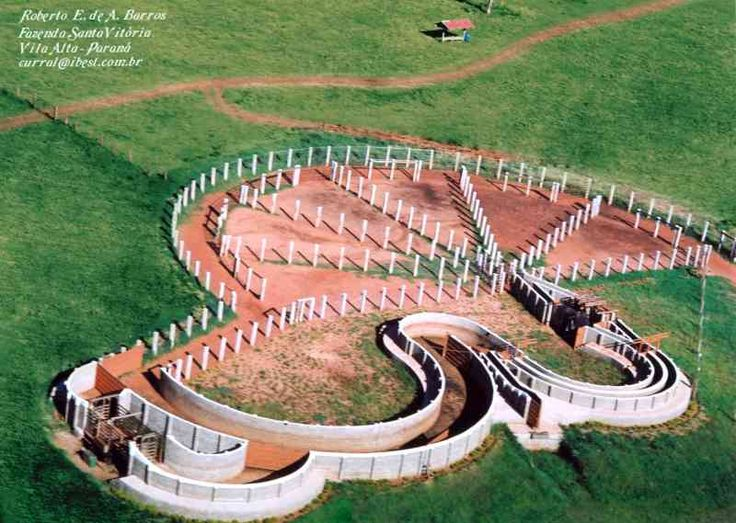 This Australian cattle ranch is one of Dr. Temple Grandin's designs.  If only more ranchers would use these to save stress on the livestock!