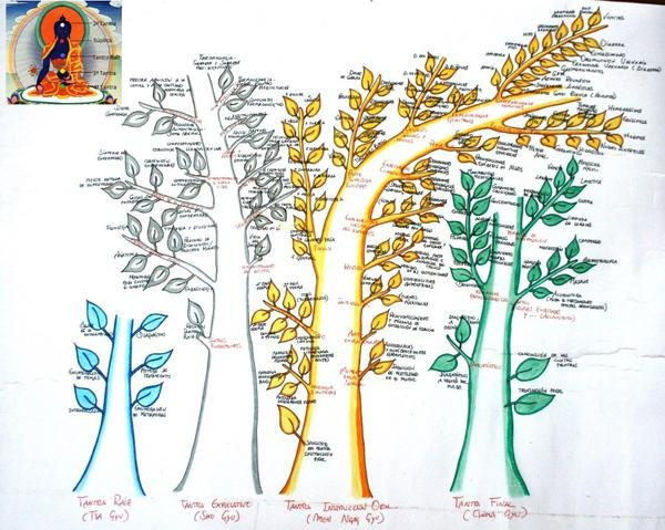the four medicine trees, representing the Four Tantras, the main text of Tibetan Medicine