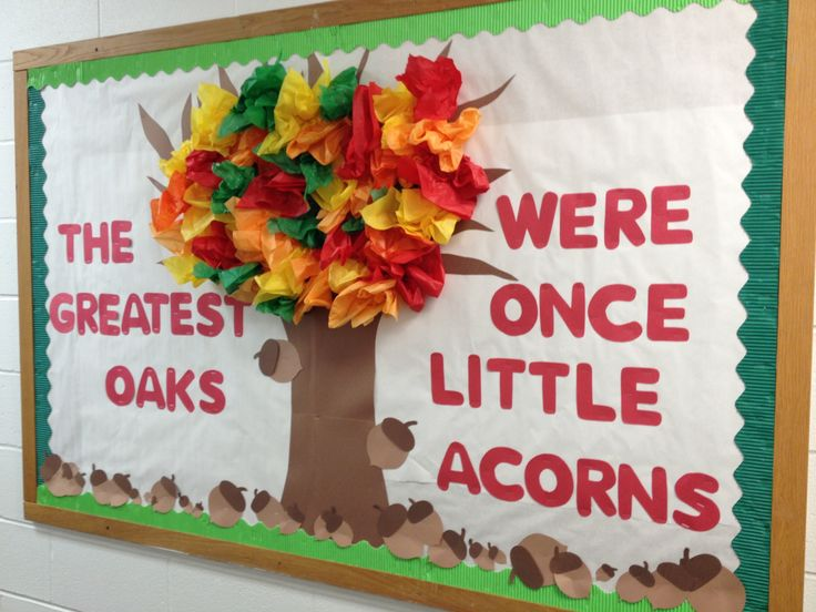 Fall bulletin board: The greatest oaks, were once little acorns.