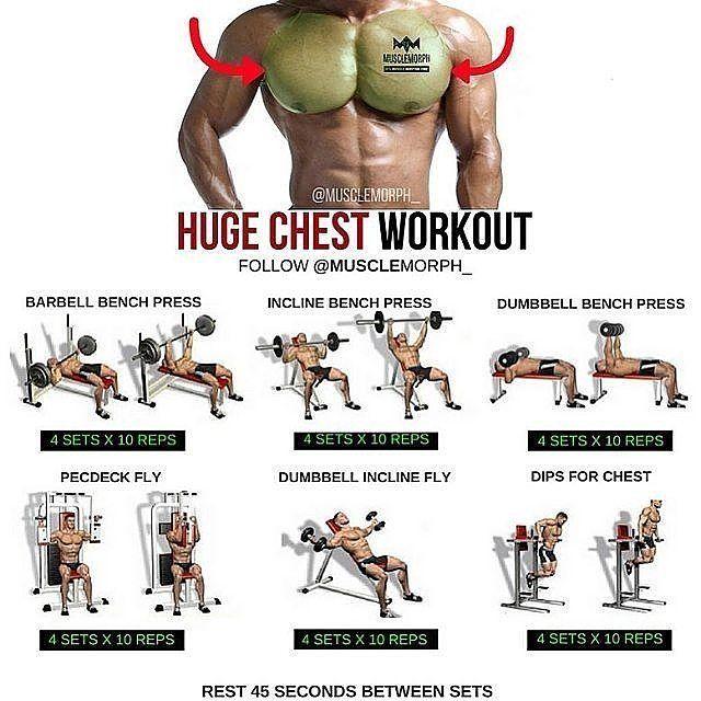 3,617 отметок «Нравится», 14 комментариев — FITNESS IMPORTANCE (@fitness_importance) в Instagram: «Chest workout  Credit:@musclemorph_ Follow @fitness_importance…»