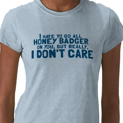 Honey Badger don't care. Yeah, if you are not an LSU fan you probably don't get it!
