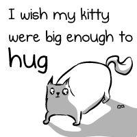 I wish my kitty were big enough to hug - The Oatmeal