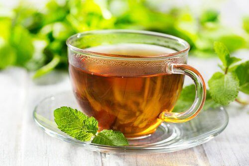 Um chá de hortelã morno pode ser um remédio excelente para os dias em que sofremos dores de cabeça ou no estômago. Saiba como utilizá-lo aqui!