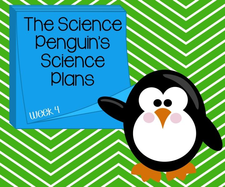 The Science Penguin's Science Plans Week 4 — The Science Penguin