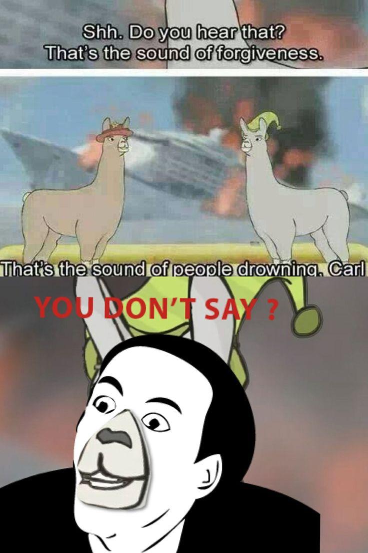 a0b8cdb6c67531b5492a0f566568b888 llamas with hats forgiveness 59 best llamas with hats images on pinterest ha ha, funny photos