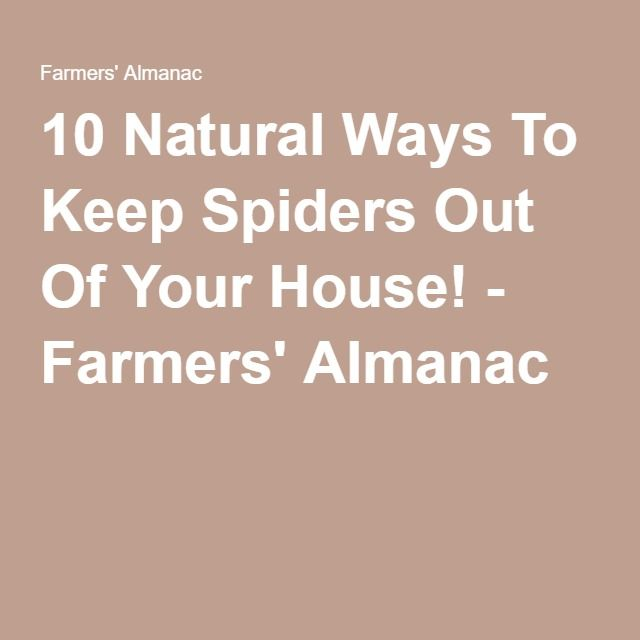 15 best images about farmers 39 almanac on pinterest for How to keep spiders out of the house