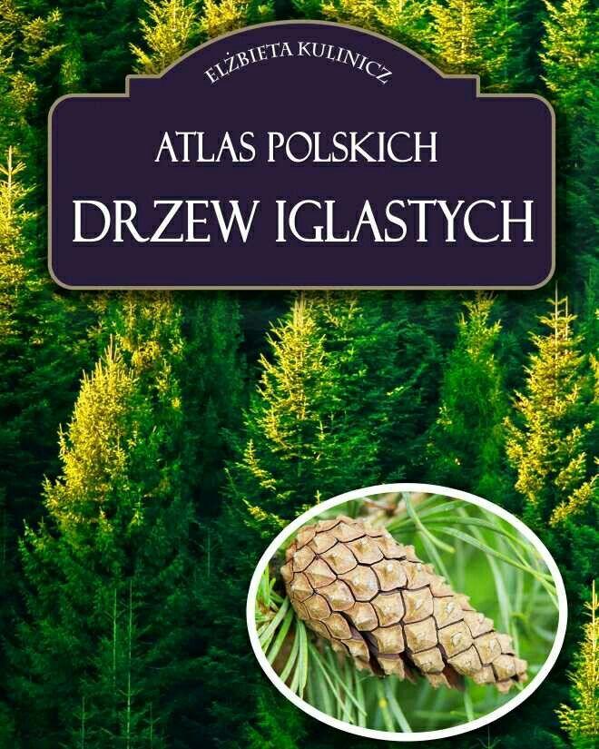 Atlas polskich drzew iglastych http://loloki.pl/opowiadania/631