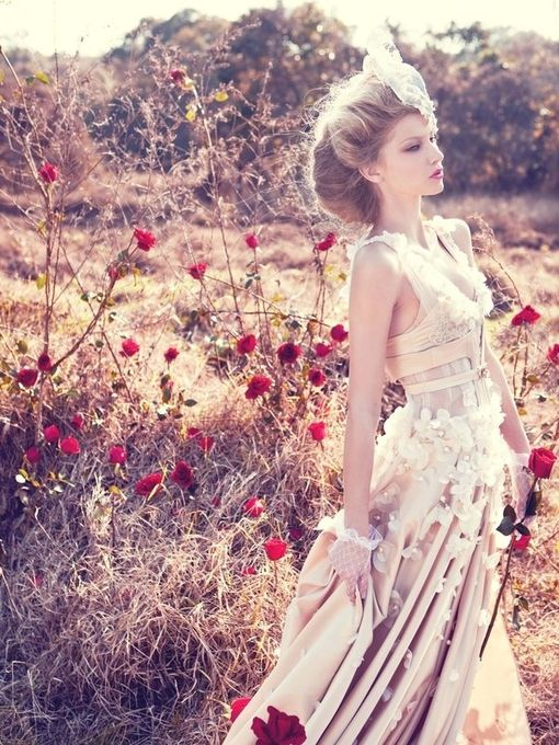 light and dreamy: Wedding Dressses, Rose Gardens, Wedding Photography, Flowers Dresses, Red Flowers, Red Rose, The Dresses, Romantic Wedding Dresses, Fields