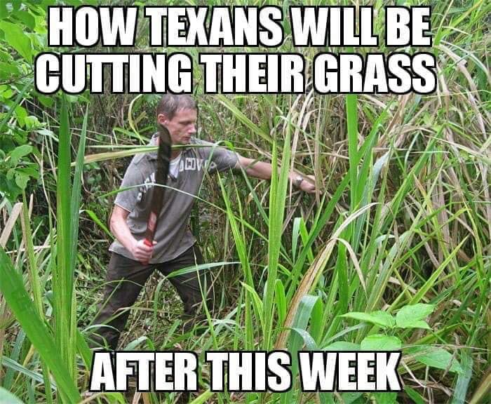 Steve C On Twitter Lawn Care Humor Lawn Care Business Lawn Care