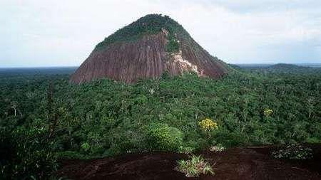 Parque Nacional Puinawai #colombia