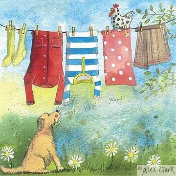 Alex Clark | Smelly Towels? | Stinky Laundry? | Washer Odor? | http://WasherFan.com | Permanently Eliminate or Prevent Washer & Laundry Odor with Washer Fan™ Breeze™ | #Laundry #WasherOdor #SWS