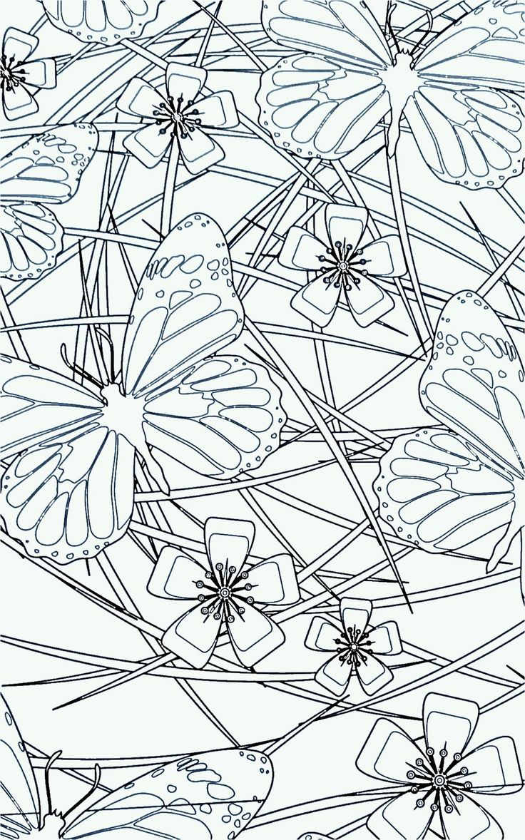 969 best drawings images on pinterest draw coloring books and