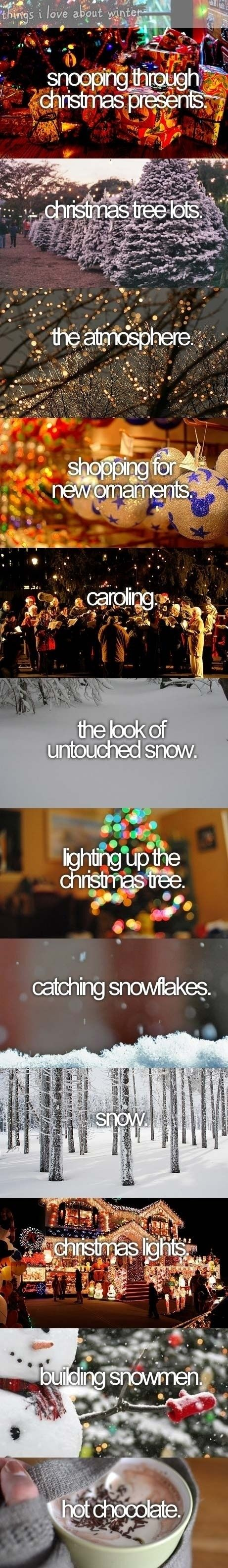 Things I miss about Christmas.