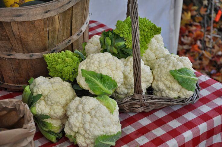 Strattons Farm: CSA Newsletter ~ Week 16
