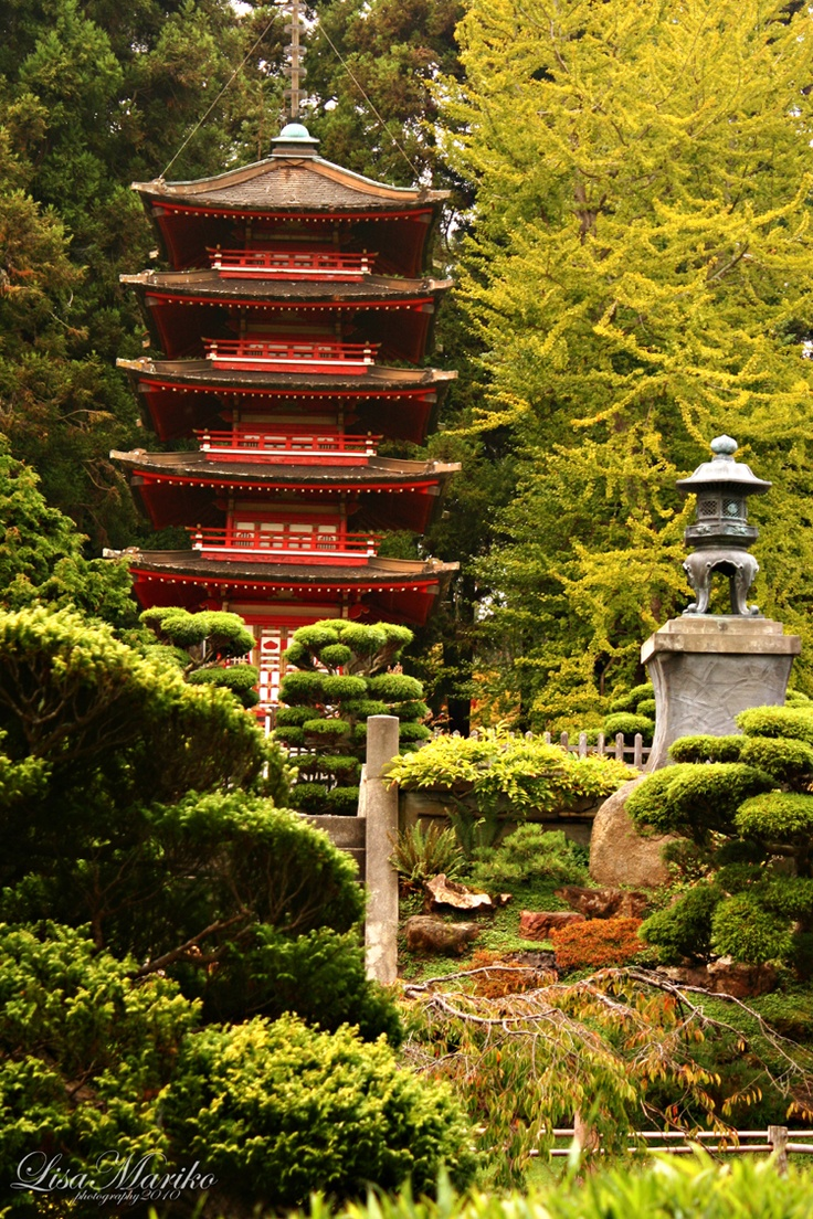 1000 Images About Japanese Tea Garden San Francisco On