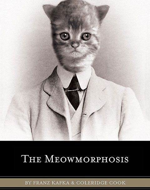 """One morning, as Gregor Samsa was waking up from anxious dreams, he discovered that he had been changed into an adorable kitten."""