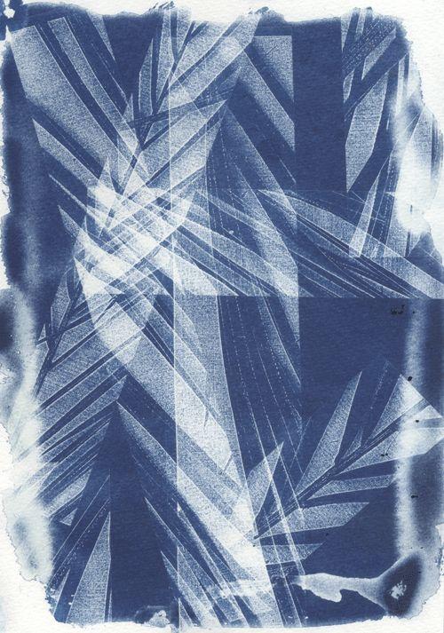 Cyanotype 4 / Natalie Ratcliffe