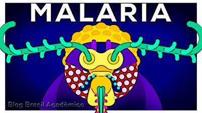 Podemos acabar com a malária para sempre devemos fazê-lo?  Nós temos a escolha de atacar um dos mais antigos inimigos com engenharia genética. Mas devemos fazê-lo?  E se você pudesse usar engenharia genética para frear o predador mais perigoso da humanidade? O animal mais mortífero do planeta responsável pela morte de bilhões: O poderoso mosquito. Entre outras doenças ele é vetor da malária. Um dos parasitas mais cruéis na Terra. Possivelmente o maior assassino da história da humanidade…