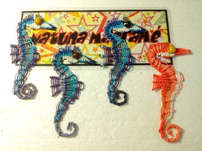Seahorses :D