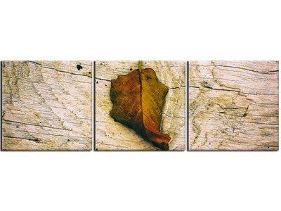 Obraz Tryptyk 120x40 Obrazy Drukowane Jesień Liść