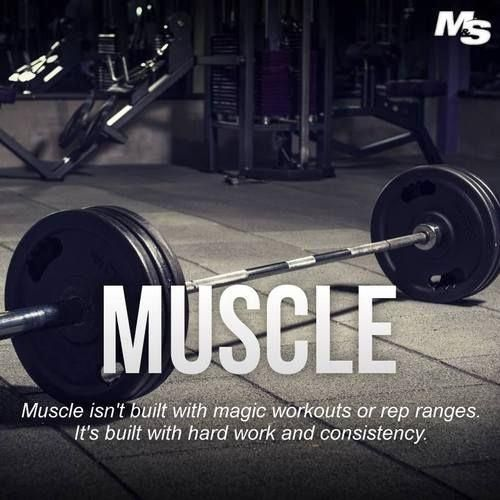 Muscle #workout #motivation #fitspiration #health #inspiration #fitlife #fitness #fitlife #moveyourbody