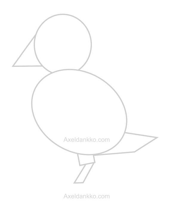 17 meilleures id es propos de dessin oiseau facile sur pinterest comment dessiner un oiseau - Oiseau dessin facile ...