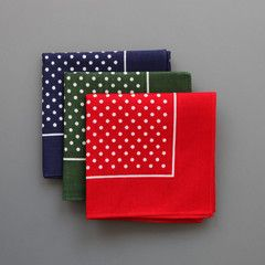 Polkadot Handkerchief