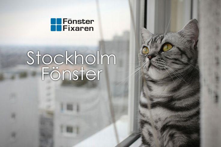 Köpa eller byta #fönster i #Stockholm? Letar du efter fönster, altandörrar, skjutdörrar? Inga problem. Kolla på hemsidan och se om du ska #köpa träfönster eller Pvc fönster. Vad du än väljer garanterar vi dig en bra affär och snygga fönster. Välkommen in och kika.