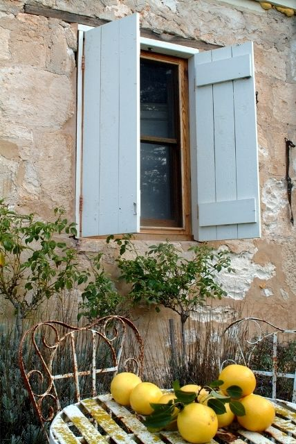<3 the shutters and everything else about this photo, the grapefruit, the old iron chairs and tables, the little topiaries behind them..<3 !