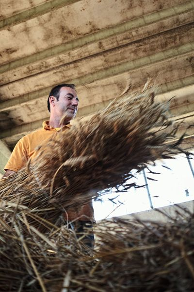 Meet our farmers Gogni Stefano