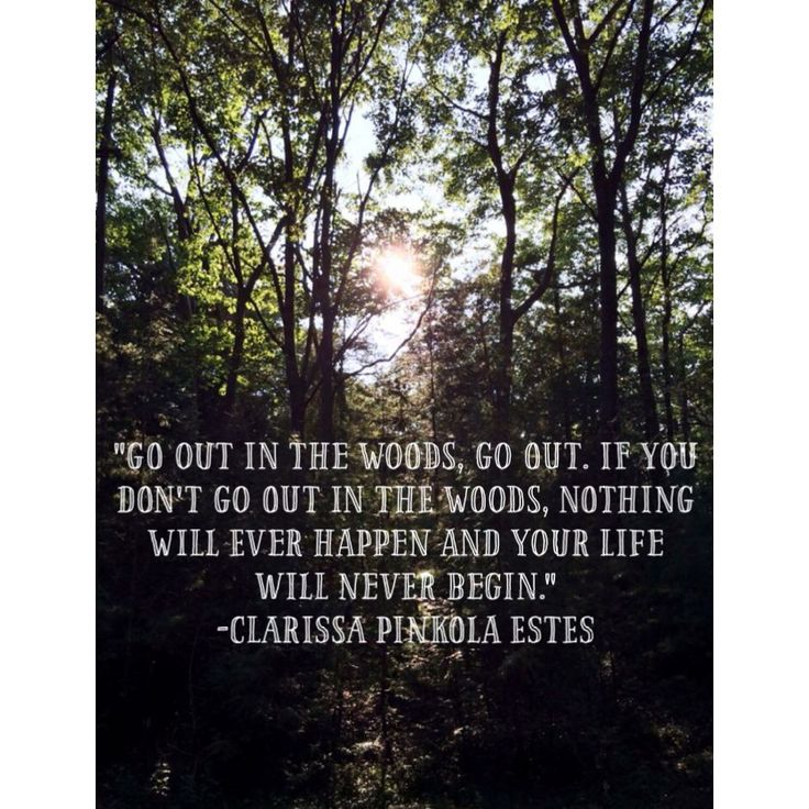 """""""Go out into the woods""""   Clarissa Pinkola Estes   Women Who Run With the Wolves   wild women quotes / quote"""