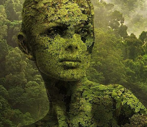 Igor Morski is a Polish illustrator & graphic artist with quite a style. I love surreal style artwork and nn this post you will see some pieces from his Nature collection and also his portrait collection. His work is very detailed and very intriguing like most of surreal work, but his art looks so real it's almost like a magical photograph. .