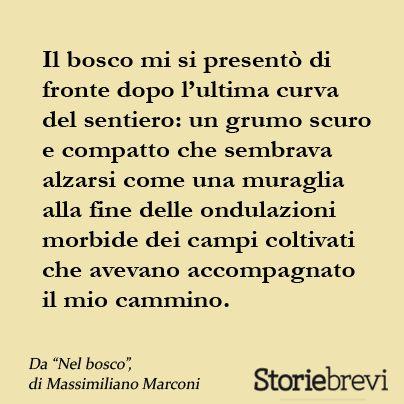 Massimiliano Marconi, Nel bosco