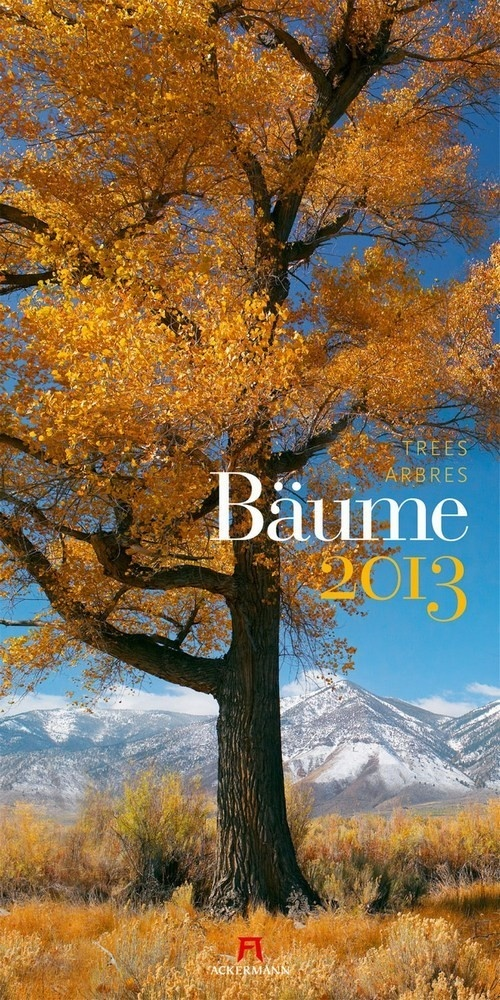 -Bunte Blätter- Ackermann Kalender Bäume 2013