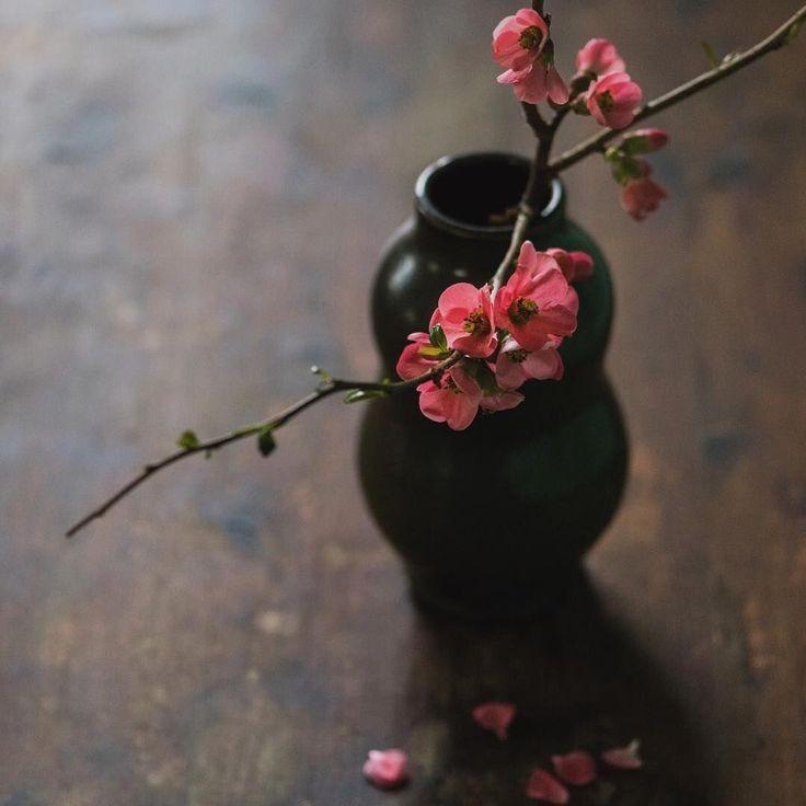 W moim magicznym domu   wabisabimind: poppybarach