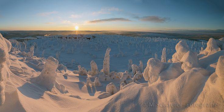 Morning sunlight by Menno Schaefer on 500px