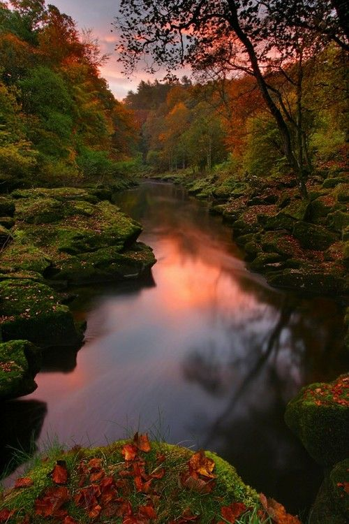 The Strid, Bolton Abbey, Yorkshire Dales, UK