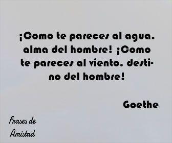 Frases de almas gemelas de Goethe