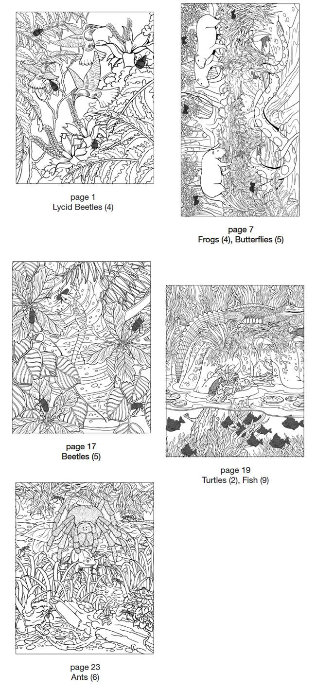 65 best color by numbers images on pinterest coloring sheets