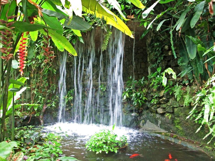 Waterfall 🦋💙شلال  #تصويري #مدونة #سفر #سافر #مسافرون #مسافرون_العرب #مغامرات_من_الشرق__الى_الغرب  #كوالامبور #ماليزيا #حدائق #حديقة_الفراشات #حديقة_الفراشات_ماليزيا #فراشة  #easttowestadventures #travelblogger  #travelphotographer #blogger #malaysia #kualalumpur #gardens #thingstodo #thingstodoinkualalumpur #butterflygarden #butterfly