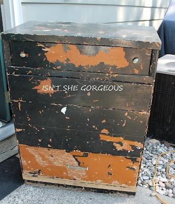 """ART IS BEAUTY: Dumpster DIVE to Dumpster DIVA etched """"LILY"""" DRESSER"""