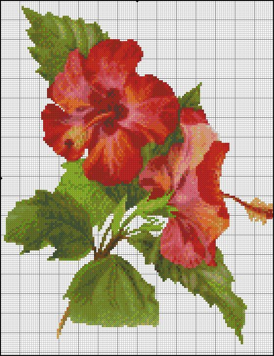 a0bf9501be827a9da5f968a1d2734ebf.jpg (560×728)