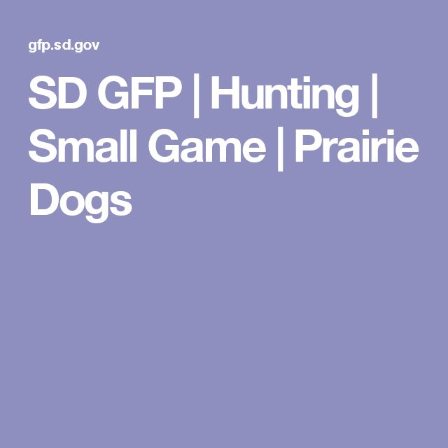 SD GFP | Hunting | Small Game | Prairie Dogs