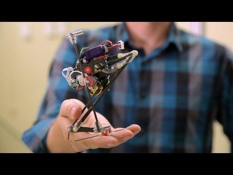 SALTO – Berkeley's leaping robot