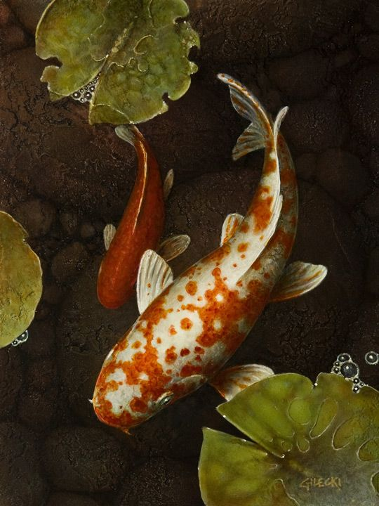 275 Best Images About Fish Painting Projects On Pinterest